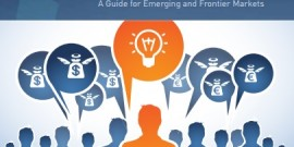 Creating your Own Angel Investor Group (2013)