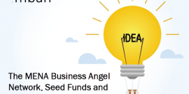 MENA Business Angels Network Presentation